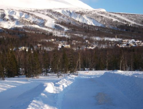 Helt nya bilder från tomt området Björnfällan – februari 2020